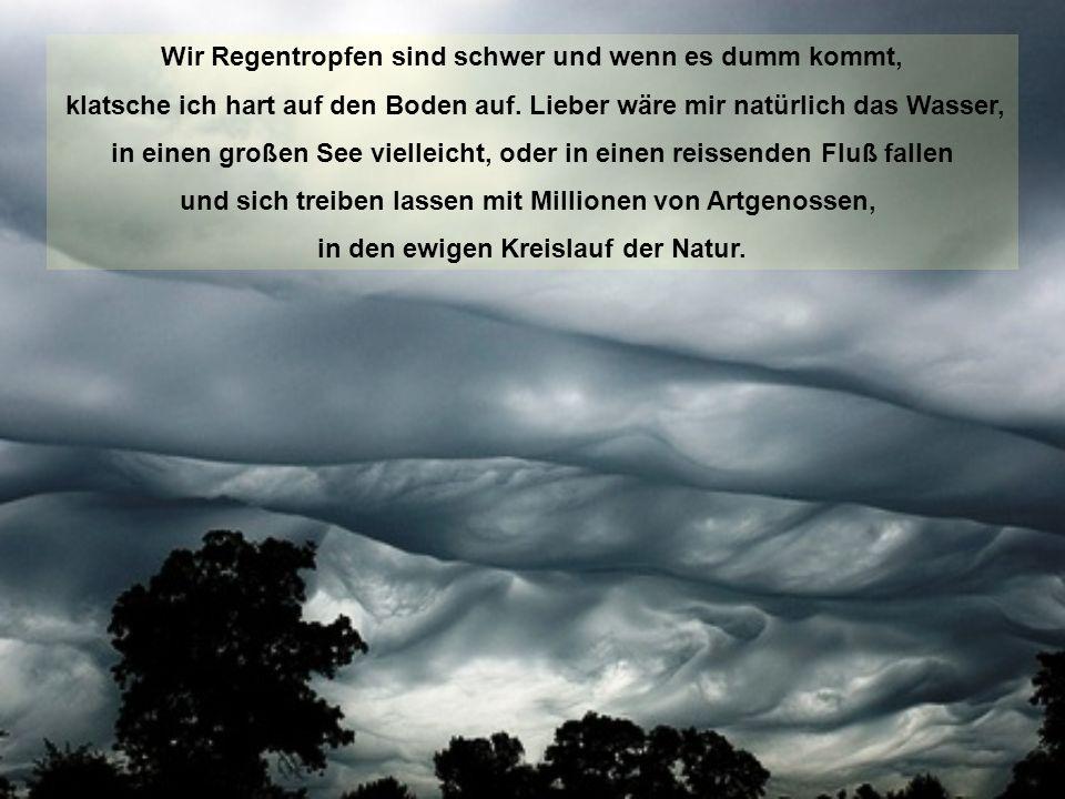 Mutter Wolke zieht schwer gefüllt mit uns dicken Regentropfen, durch den trüben Himmel. Lang kann es nicht mehr dauern und sie wird sich öffnen und un