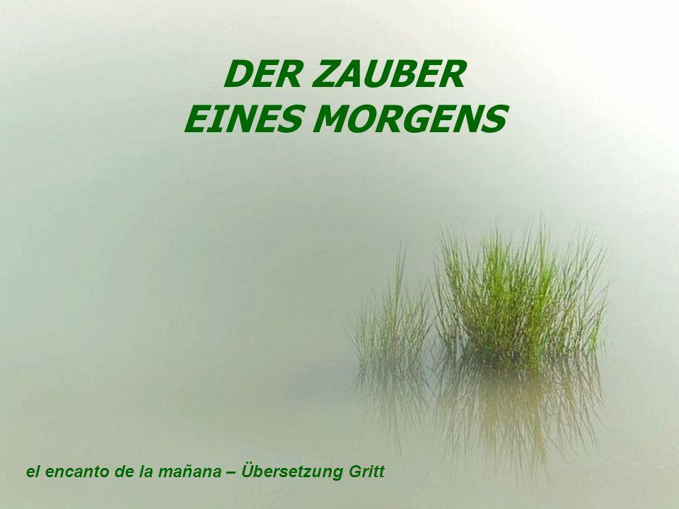 DER ZAUBER EINES MORGENS el encanto de la mañana – Übersetzung Gritt