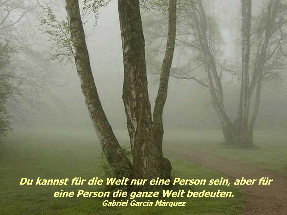 Eine Seele, die durch die Augen zu sprechen vermag, kann auch mit Blicken küssen. Gustavo Adolfo Becquer