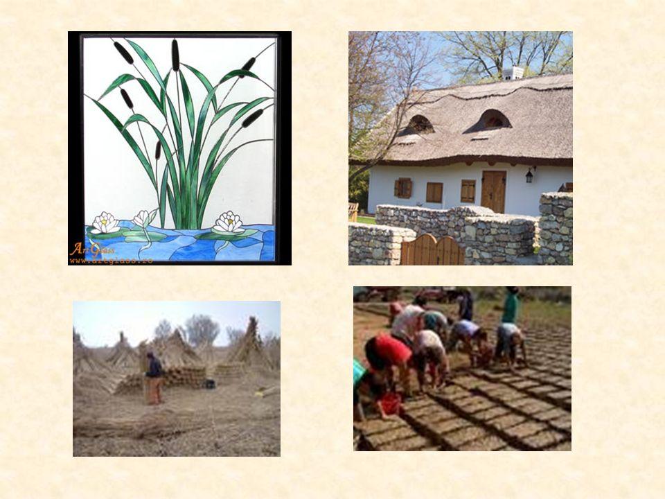 Mit diesen Gebäuden sparte man sehr viele Energie, man benutzte nur natürliche Baustoffe, wie z.B. Stroh oder Lehmstein. Heutzutage gibt es leider nur