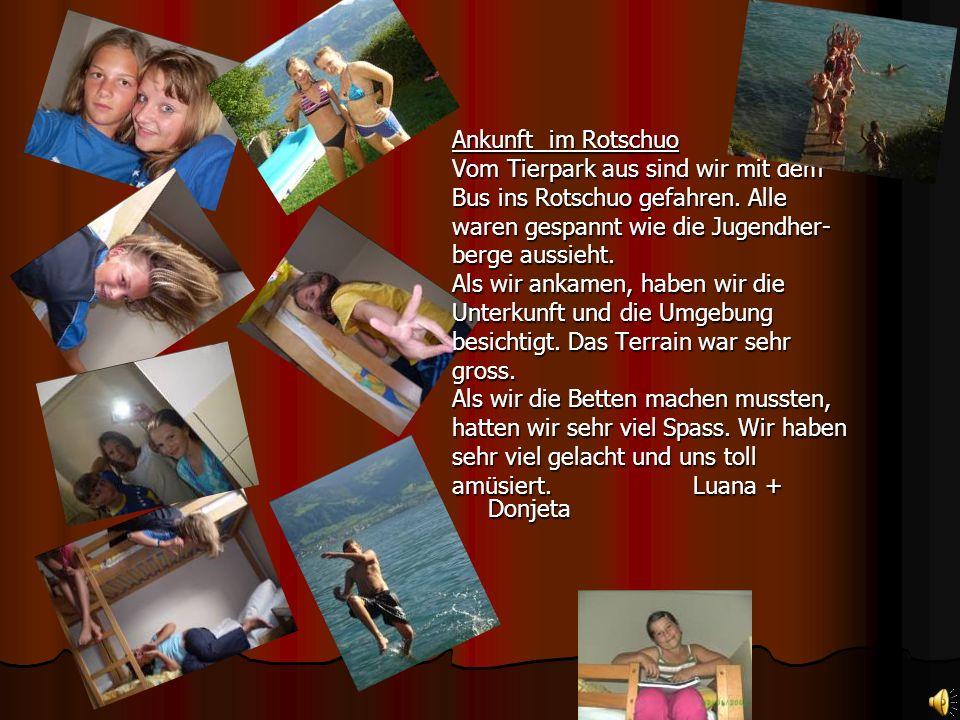 Workshop Der Tierpark verfügte auch über eine Tierparkschule. Wir gingen mit Frau Vinzenz in die schule und besichtigten sie. In der Tierparkschule ha