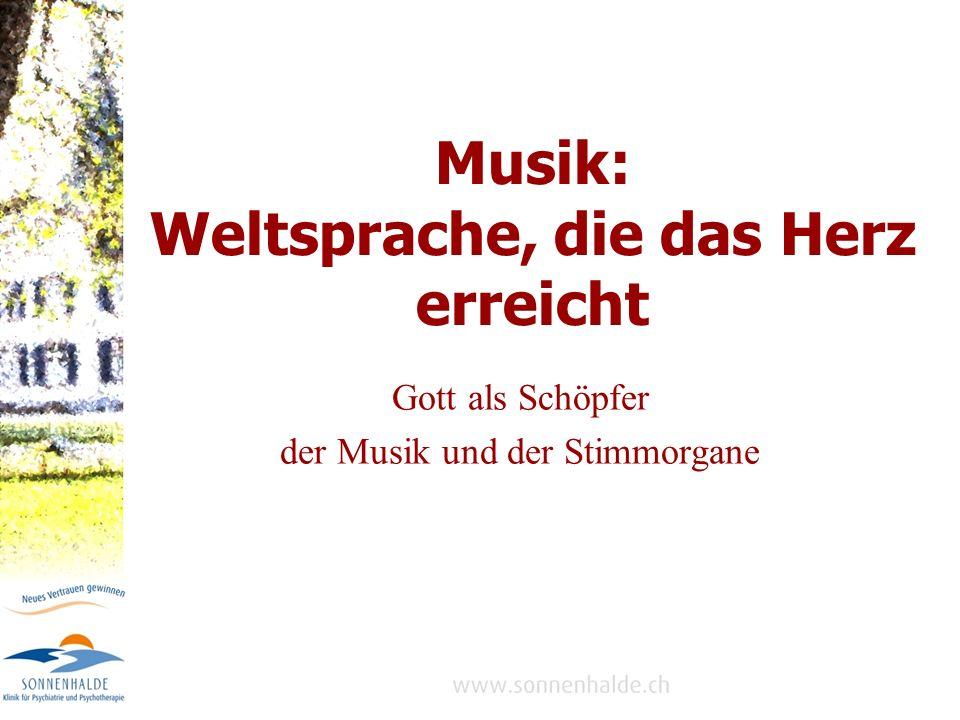 Der Schöpfer der menschlichen Kreativität macht es möglich: bauen von Instrumenten komponieren schreiben von Liedtexten musizieren Musik ist ein Geschenk des Schöpfers