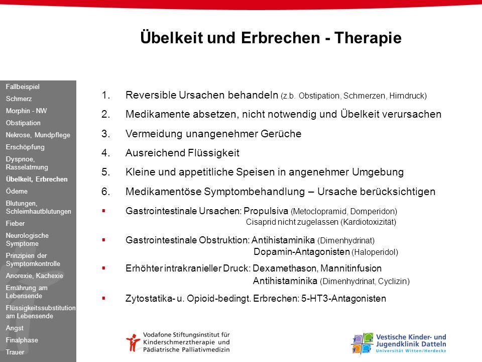 1.Reversible Ursachen behandeln (z.b. Obstipation, Schmerzen, Hirndruck) 2.Medikamente absetzen, nicht notwendig und Übelkeit verursachen 3.Vermeidung