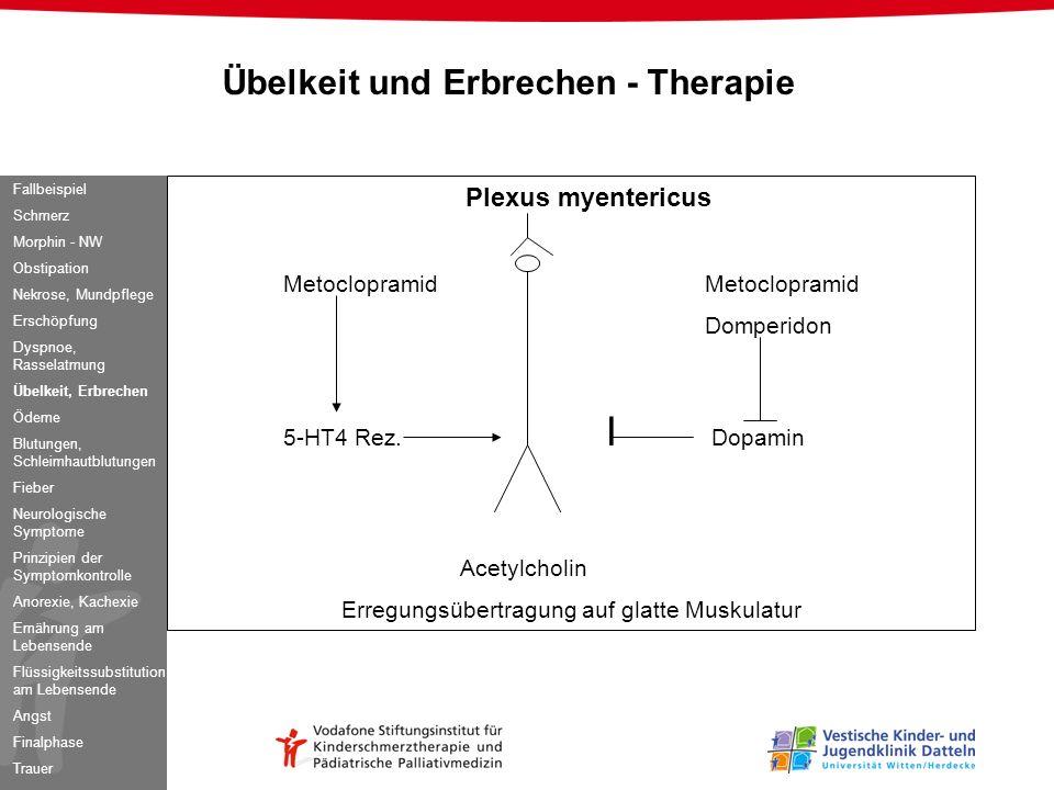 Übelkeit und Erbrechen - Therapie Plexus myentericusMetoclopramid Domperidon 5-HT4 Rez. I Dopamin Acetylcholin Erregungsübertragung auf glatte Muskula