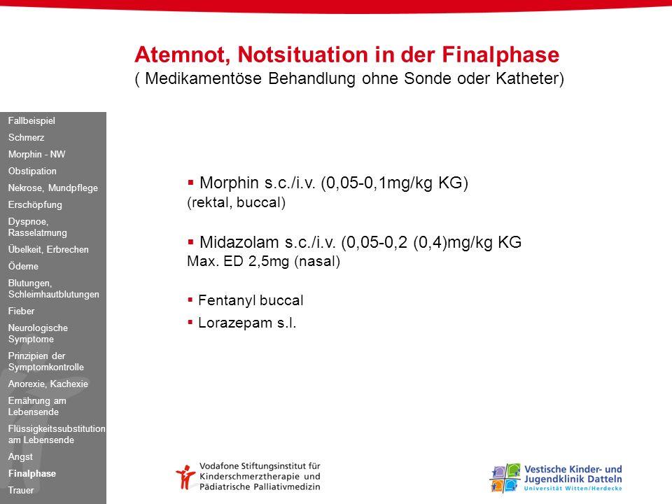 Morphin s.c./i.v. (0,05-0,1mg/kg KG) (rektal, buccal) Midazolam s.c./i.v. (0,05-0,2 (0,4)mg/kg KG Max. ED 2,5mg (nasal) Fentanyl buccal Lorazepam s.l.