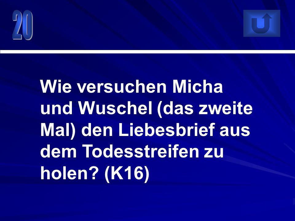 Wie versuchen Micha und Wuschel (das zweite Mal) den Liebesbrief aus dem Todesstreifen zu holen? (K16)