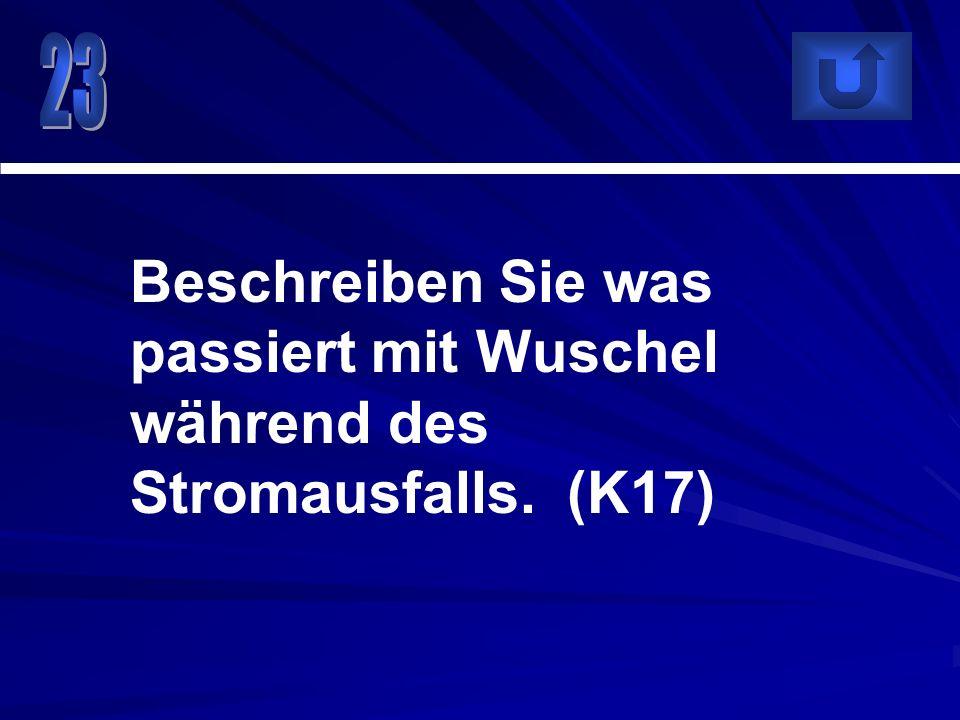 Beschreiben Sie was passiert mit Wuschel während des Stromausfalls. (K17)