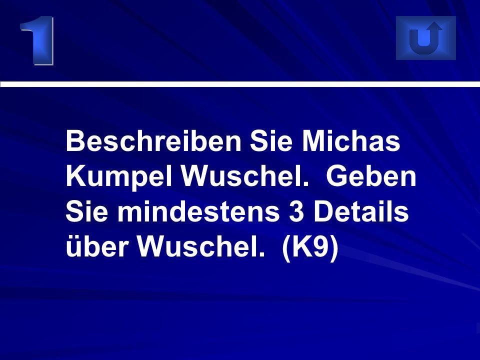 Beschreiben Sie Michas Kumpel Wuschel. Geben Sie mindestens 3 Details über Wuschel. (K9)