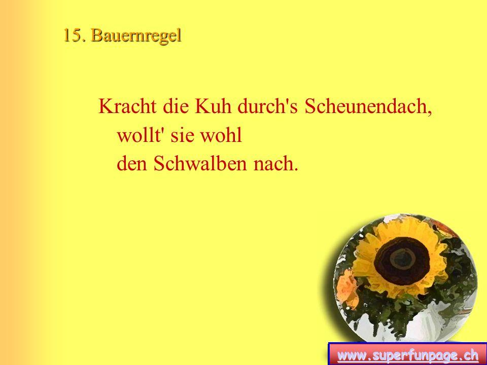 www.superfunpage.ch 15. Bauernregel Kracht die Kuh durch's Scheunendach, wollt' sie wohl den Schwalben nach.