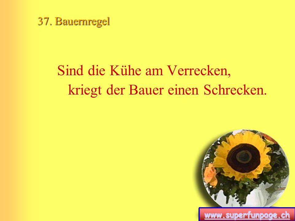 www.superfunpage.ch 37. Bauernregel Sind die Kühe am Verrecken, kriegt der Bauer einen Schrecken.
