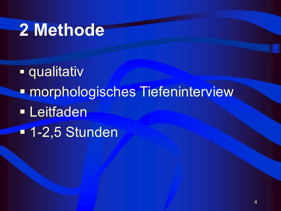 4 2 Methode qualitativ morphologisches Tiefeninterview Leitfaden 1-2,5 Stunden