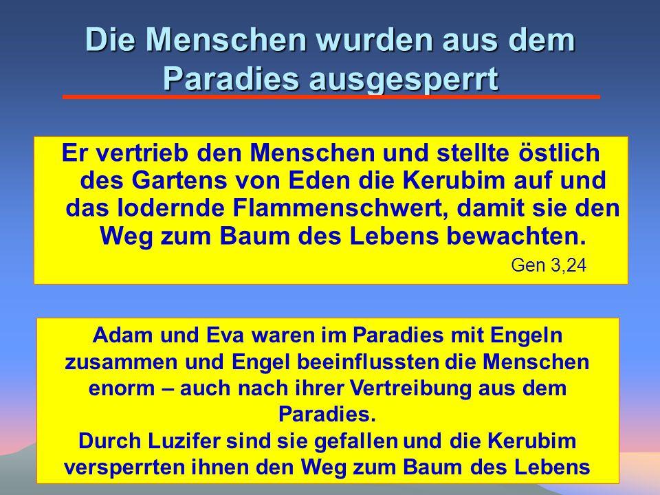 Die Menschen wurden aus dem Paradies ausgesperrt Er vertrieb den Menschen und stellte östlich des Gartens von Eden die Kerubim auf und das lodernde Flammenschwert, damit sie den Weg zum Baum des Lebens bewachten.