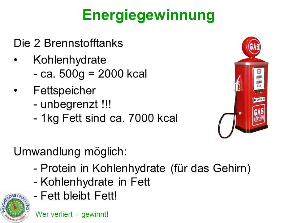 Wer verliert – gewinnt! Energiegewinnung Die 2 Brennstofftanks Kohlenhydrate - ca. 500g = 2000 kcal Fettspeicher - unbegrenzt !!! - 1kg Fett sind ca.