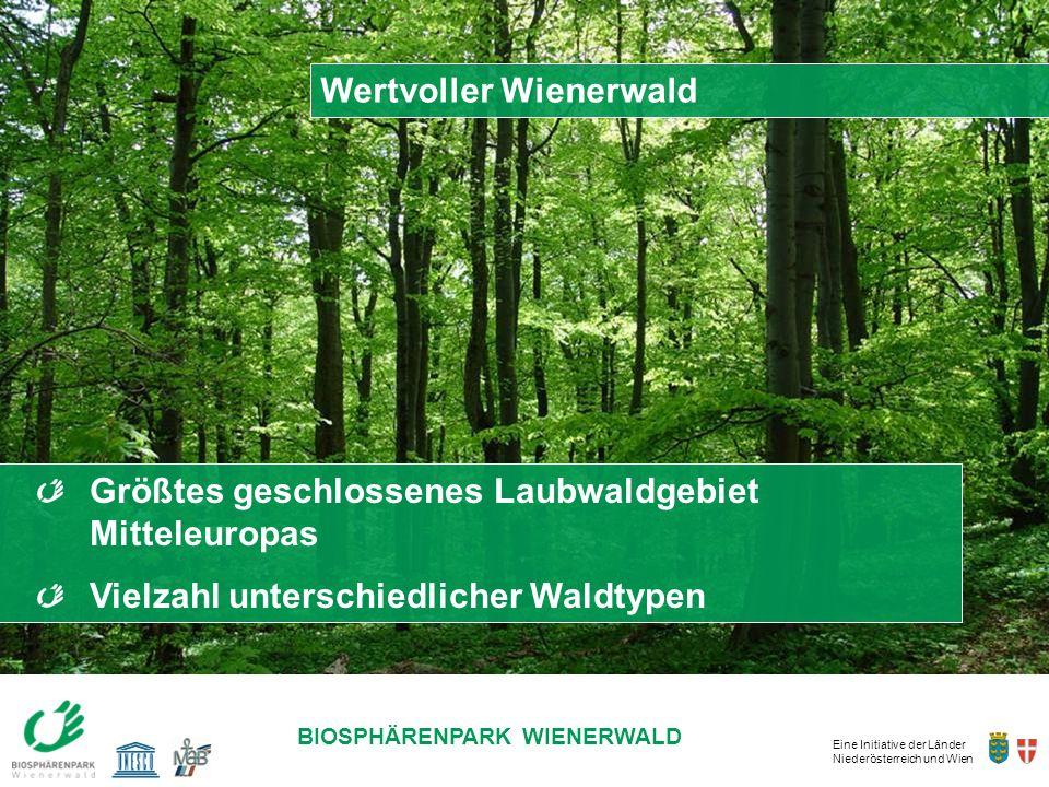 Eine Initiative der Länder Niederösterreich und Wien BIOSPHÄRENPARK WIENERWALD Größtes geschlossenes Laubwaldgebiet Mitteleuropas Vielzahl unterschied