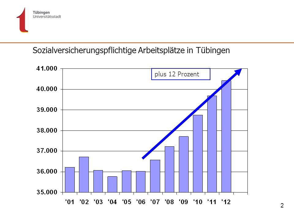 13 Wie viele Ökostrom-Kunden/innen haben die Stadtwerke Tübingen?