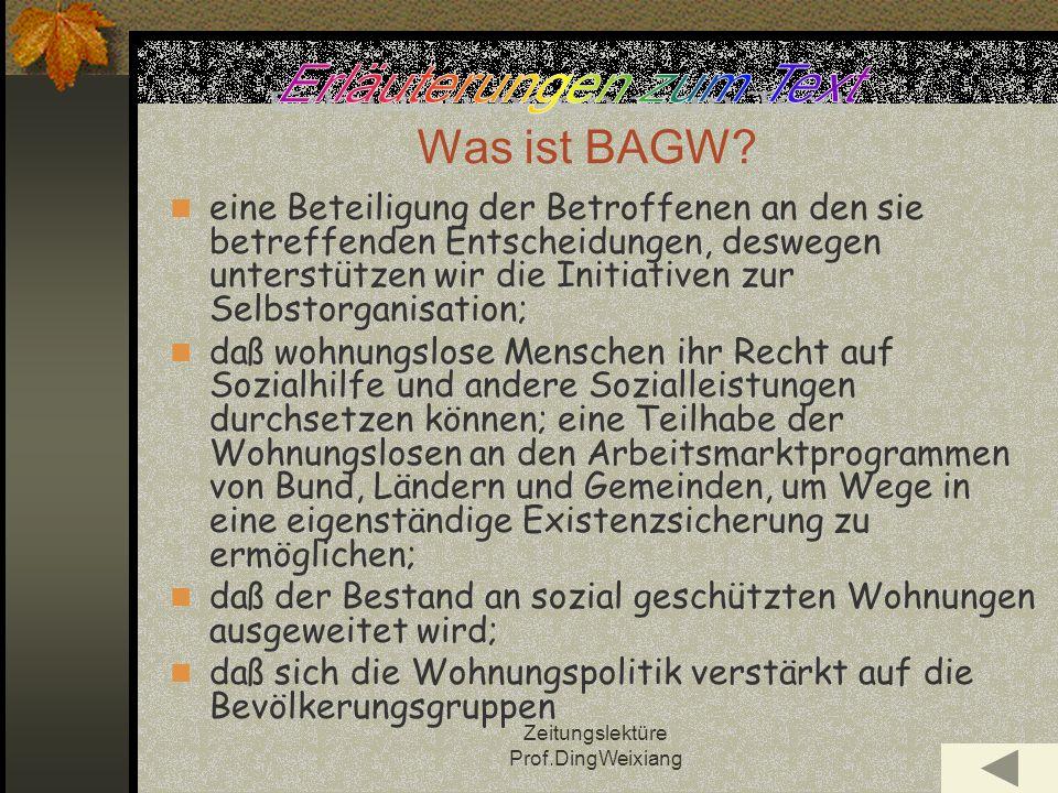 Zeitungslektüre Prof.DingWeixiang Was ist BAGW.
