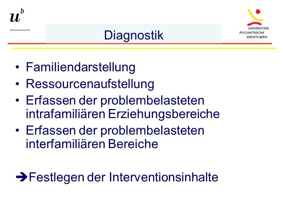 Familiendarstellung Ressourcenaufstellung Erfassen der problembelasteten intrafamiliären Erziehungsbereiche Erfassen der problembelasteten interfamiliären Bereiche Festlegen der Interventionsinhalte Diagnostik