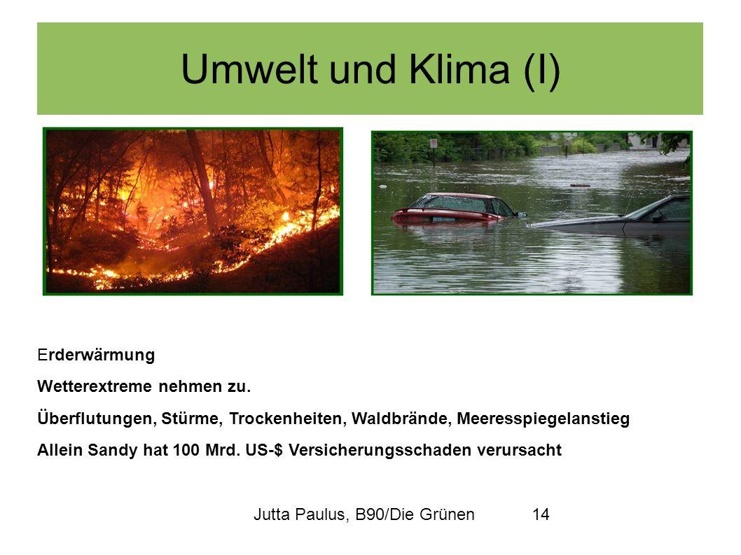 Jutta Paulus, B90/Die Grünen14 Umwelt und Klima (I) Erderwärmung Wetterextreme nehmen zu. Überflutungen, Stürme, Trockenheiten, Waldbrände, Meeresspie