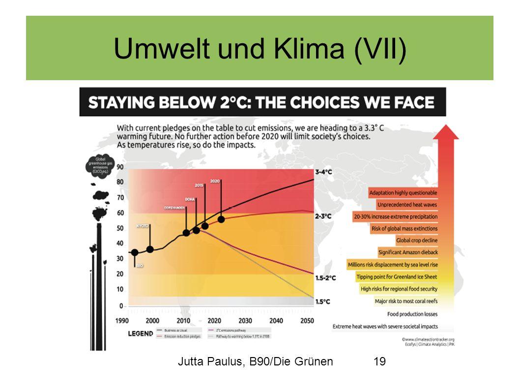 Jutta Paulus, B90/Die Grünen19 Umwelt und Klima (VII)