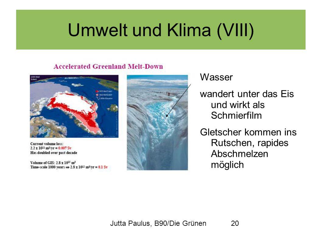 Jutta Paulus, B90/Die Grünen20 Umwelt und Klima (VIII) Wasser wandert unter das Eis und wirkt als Schmierfilm Gletscher kommen ins Rutschen, rapides A
