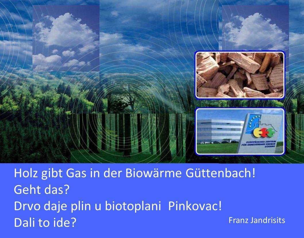 Holz gibt Gas in der Biowärme Güttenbach! Geht das? Drvo daje plin u biotoplani Pinkovac! Dali to ide? Franz Jandrisits