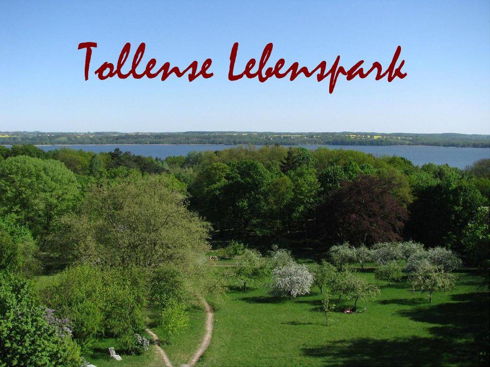 Eröffnungsbildschirm Tollense Lebenspark