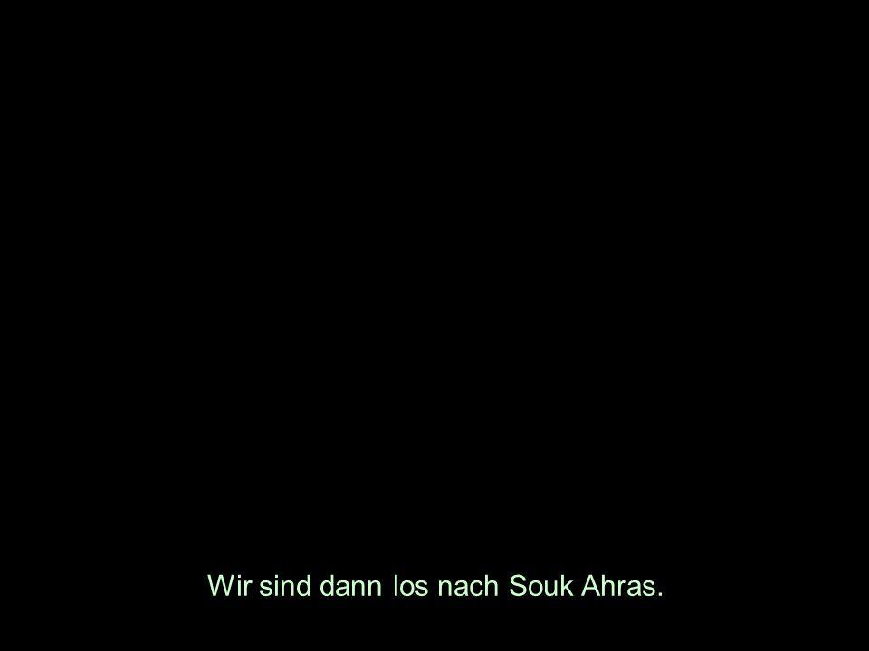 Wir sind dann los nach Souk Ahras.