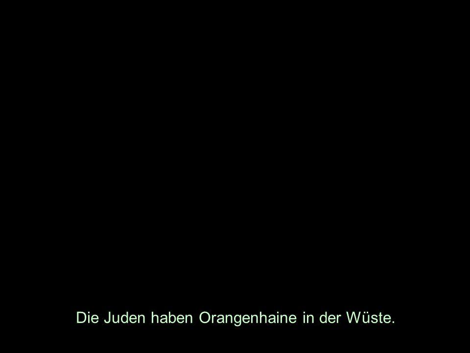 Die Juden haben Orangenhaine in der Wüste.