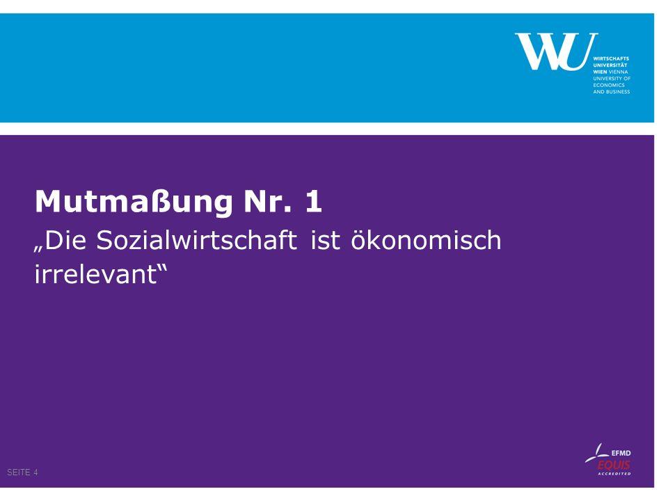Beschäftigung im Nonprofit Sektor 170.000 Beschäftigte (in VZÄ) im NP-Sektor tätig Das entspricht 5,1 % der unselbständig Beschäftigten 2005 Knapp drei Viertel davon sind Frauen SEITE 5 Quelle: Statistik Austria/Wirtschaftsuniversität Wien, Daten für 2005