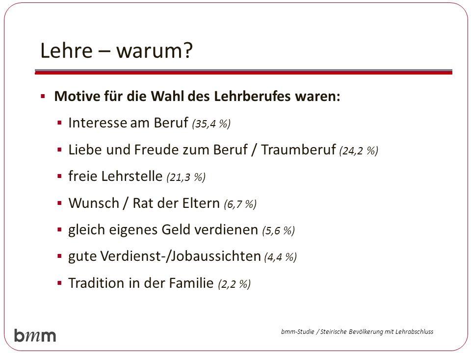 Lehre – warum? Motive für die Wahl des Lehrberufes waren: Interesse am Beruf (35,4 %) Liebe und Freude zum Beruf / Traumberuf (24,2 %) freie Lehrstell