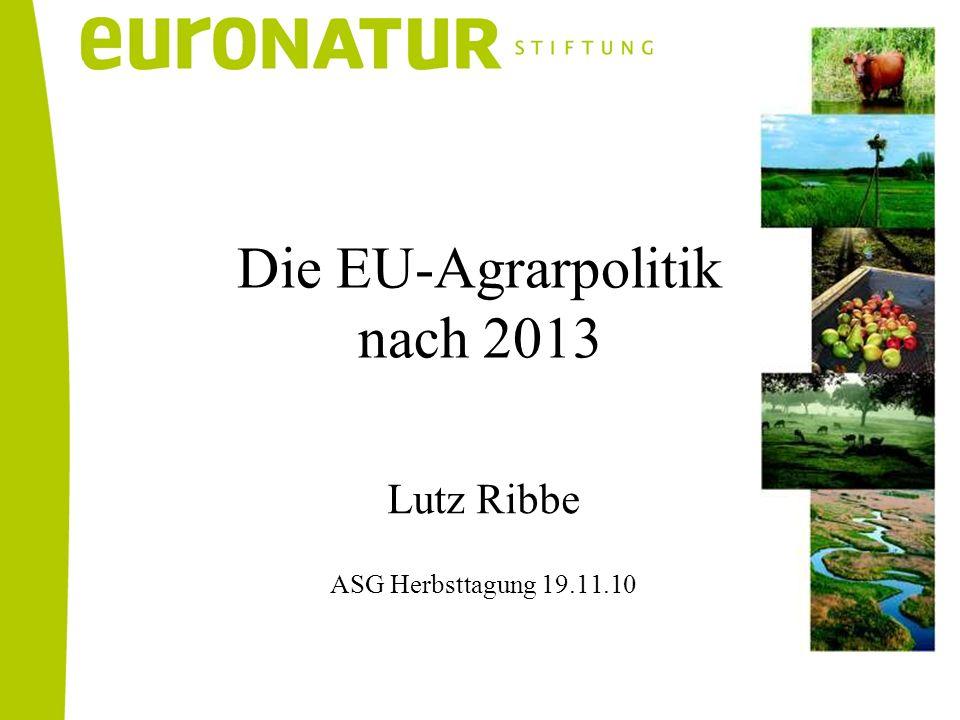 Lutz Ribbe ASG Herbsttagung 19.11.10 Die EU-Agrarpolitik nach 2013