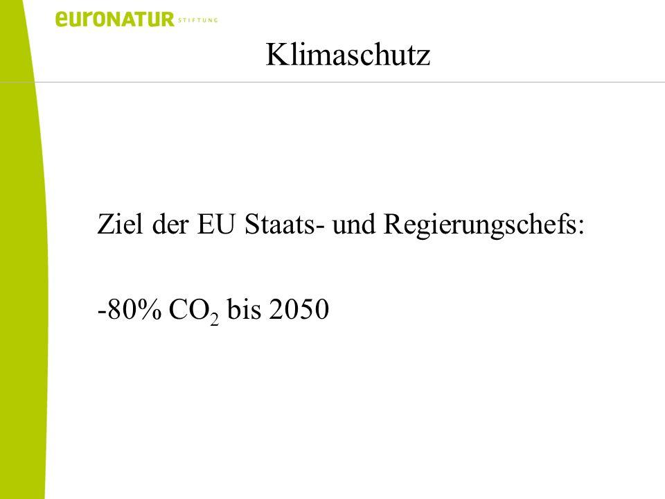 Klimaschutz Ziel der EU Staats- und Regierungschefs: -80% CO 2 bis 2050