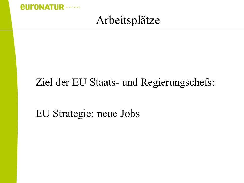 Arbeitsplätze Ziel der EU Staats- und Regierungschefs: EU Strategie: neue Jobs