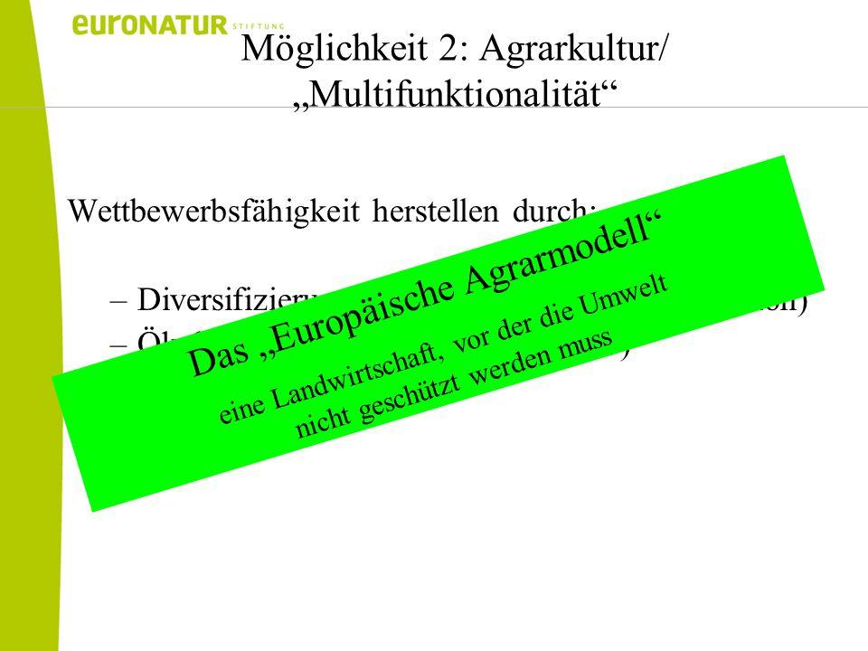 Möglichkeit 2: Agrarkultur/ Multifunktionalität Wettbewerbsfähigkeit herstellen durch: –Diversifizierung (keine reine Rohstoffproduktion) –Ökologisier