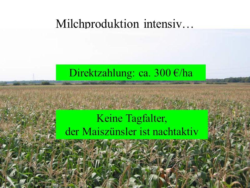 Milchproduktion intensiv… Keine Tagfalter, der Maiszünsler ist nachtaktiv Direktzahlung: ca. 300 /ha