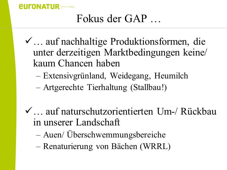 Fokus der GAP … … auf nachhaltige Produktionsformen, die unter derzeitigen Marktbedingungen keine/ kaum Chancen haben –Extensivgrünland, Weidegang, He