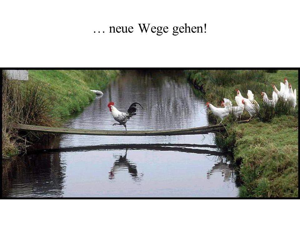 … neue Wege gehen!