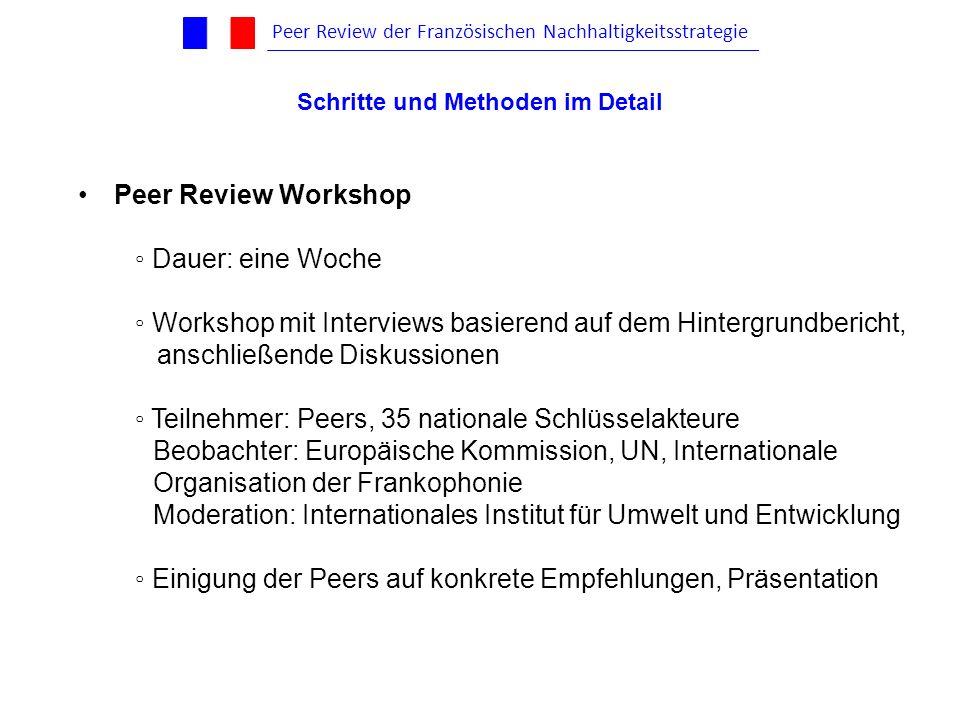Peer Review Workshop Dauer: eine Woche Workshop mit Interviews basierend auf dem Hintergrundbericht, anschließende Diskussionen Teilnehmer: Peers, 35