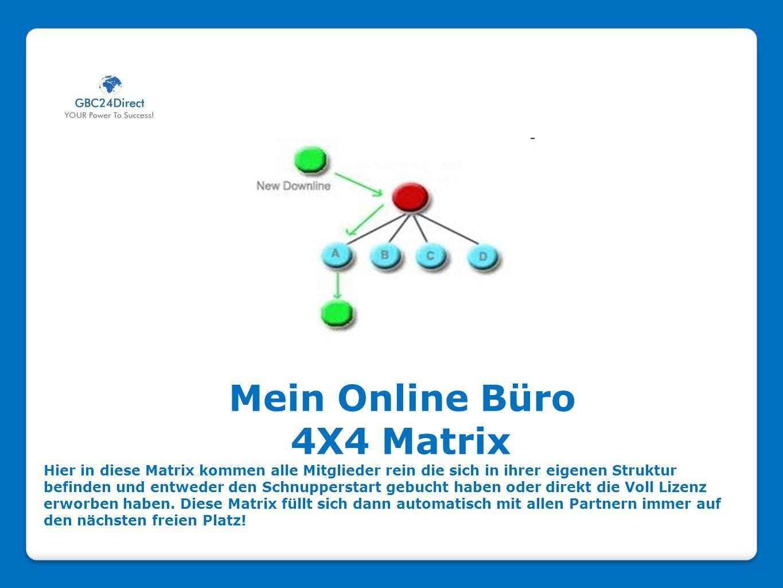 Mein Online Büro 4X4 Matrix Hier in diese Matrix kommen alle Mitglieder rein die sich in ihrer eigenen Struktur befinden und entweder den Schnuppersta