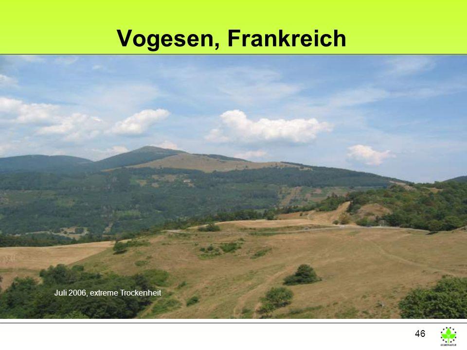 46 Vogesen, Frankreich Juli 2006, extreme Trockenheit