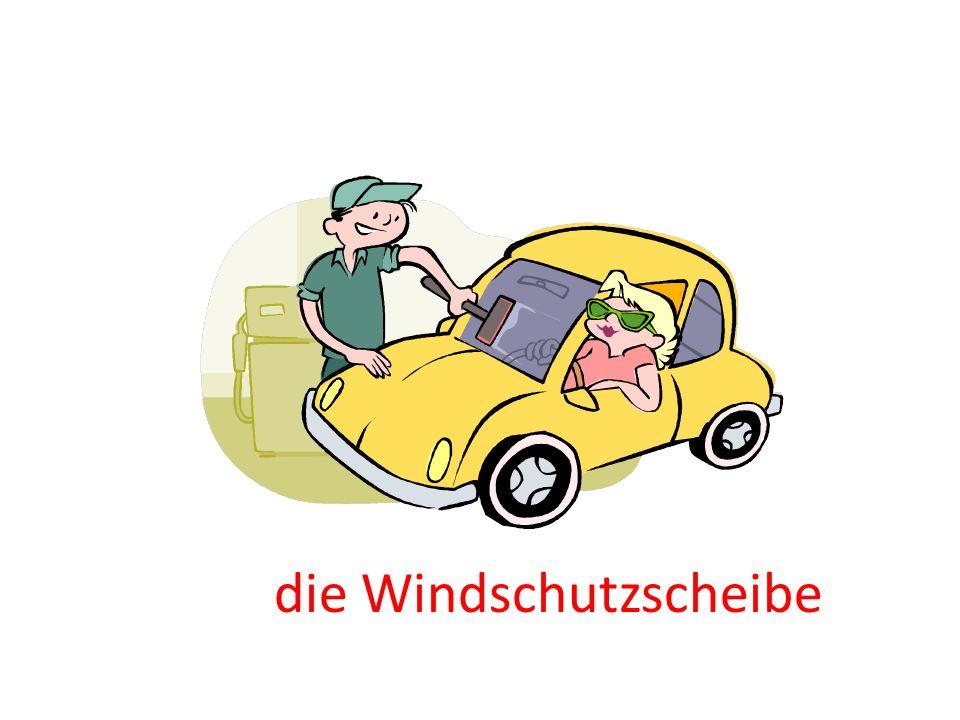 die Windschutzscheibe