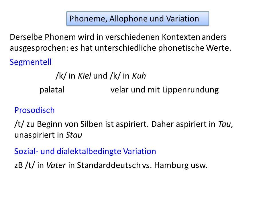 Phoneme, Allophone und Variation Derselbe Phonem wird in verschiedenen Kontexten anders ausgesprochen: es hat unterschiedliche phonetische Werte. Segm