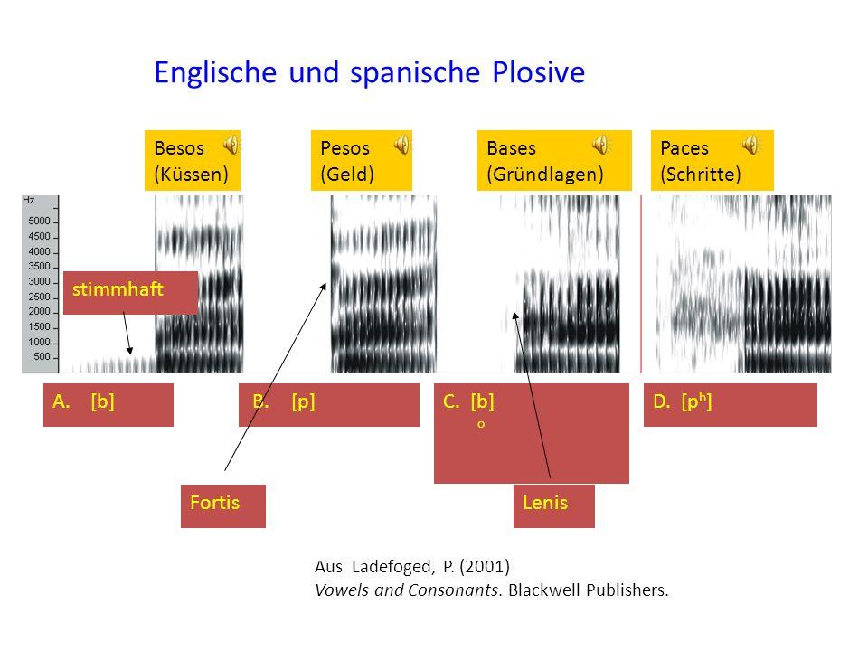 Besos (Küssen) Pesos (Geld) Bases (Gründlagen) Paces (Schritte) A. [b]D. [p h ] Englische und spanische Plosive C. [b] o B. [p] FortisLenis Aus Ladefo