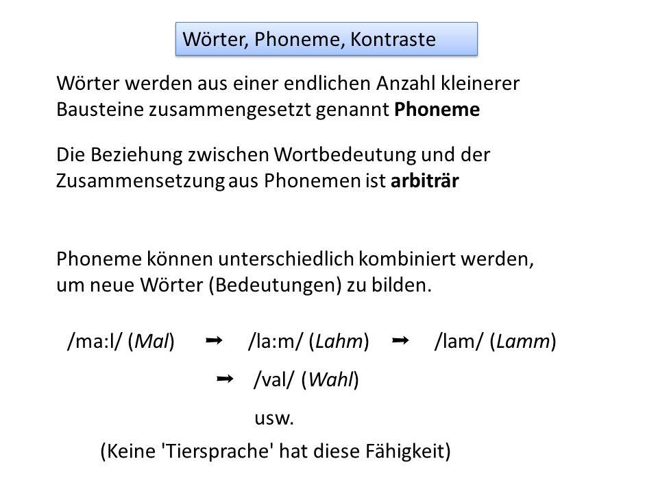 Wörter werden aus einer endlichen Anzahl kleinerer Bausteine zusammengesetzt genannt Phoneme Die Beziehung zwischen Wortbedeutung und der Zusammensetz