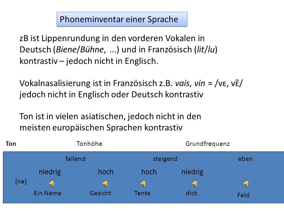 zB ist Lippenrundung in den vorderen Vokalen in Deutsch (Biene/Bühne,...) und in Französisch (lit/lu) kontrastiv – jedoch nicht in Englisch. Vokalnasa