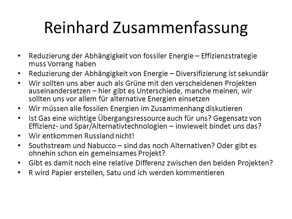 Reinhard Zusammenfassung Reduzierung der Abhängigkeit von fossiler Energie – Effizienzstrategie muss Vorrang haben Reduzierung der Abhängigkeit von Energie – Diversifizierung ist sekundär Wir sollten uns aber auch als Grüne mit den verscheidenen Projekten auseinandersetzen – hier gibt es Unterschiede, manche meinen, wir sollten uns vor allem für alternative Energien einsetzen Wir müssen alle fossilen Energien im Zusammenhang diskutieren Ist Gas eine wichtige Übergangsressource auch für uns.