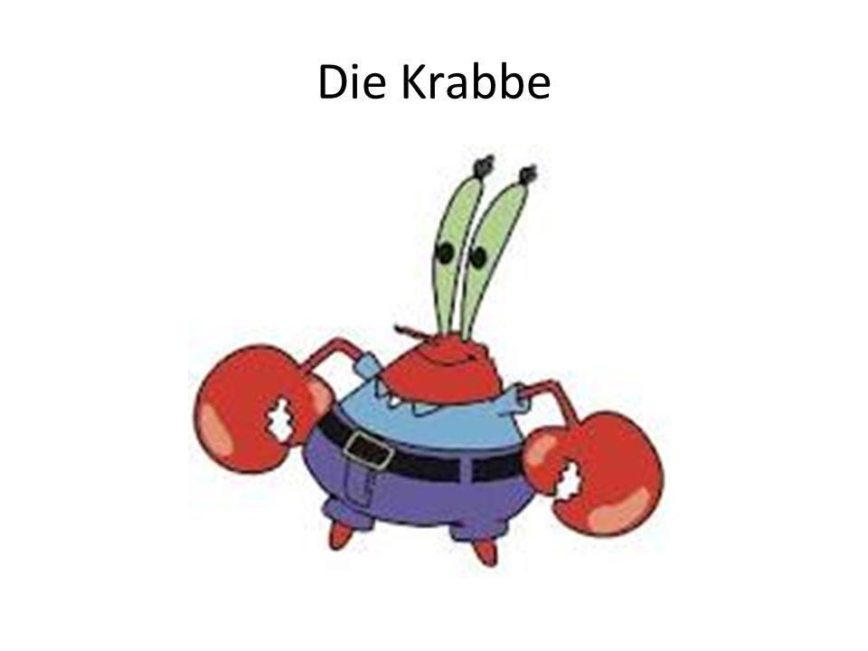 Eine Krabbe (fem.) __________ kommt aus dem See.(S-nomnative) Plankton hasst __________.