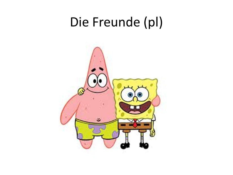 Die Freunde (pl)