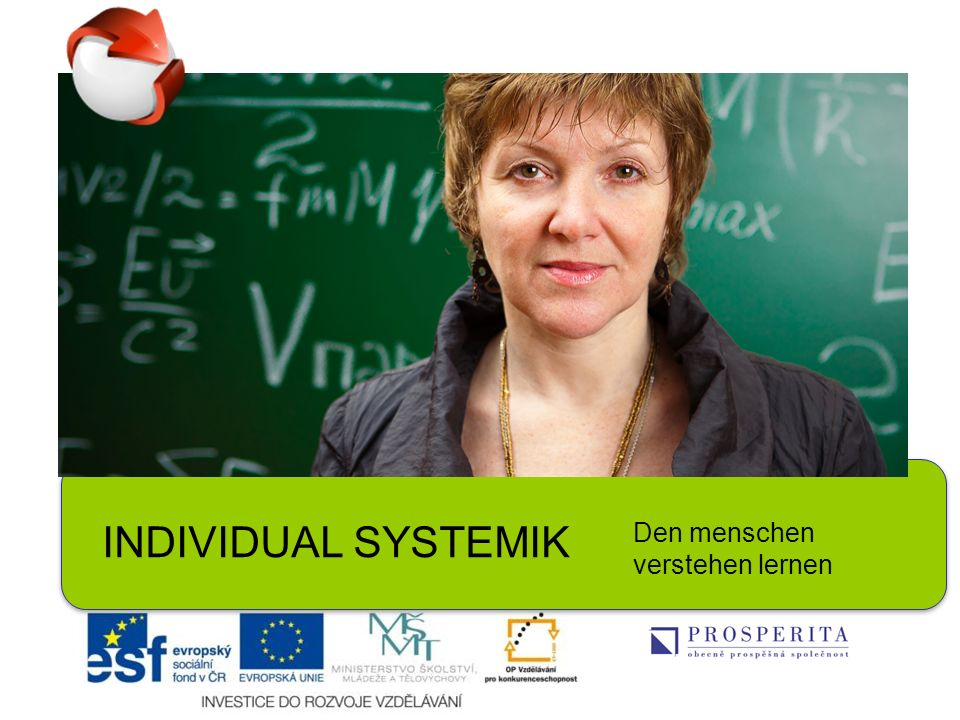 INDIVIDUAL SYSTEMIK Den menschen verstehen lernen