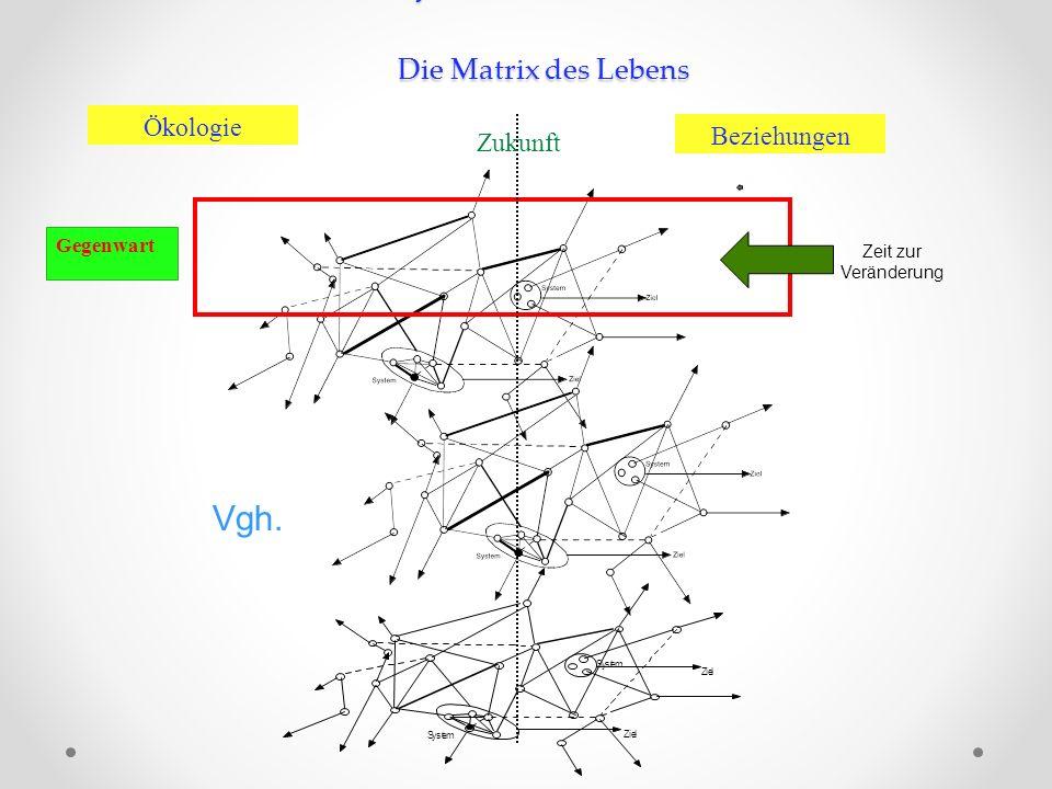 Netzwerk und Systeme Systeme im Netzwerk Die Matrix des Lebens Zukunft Beziehungen Ökologie Gegenwart Vgh. Zeit zur Veränderung